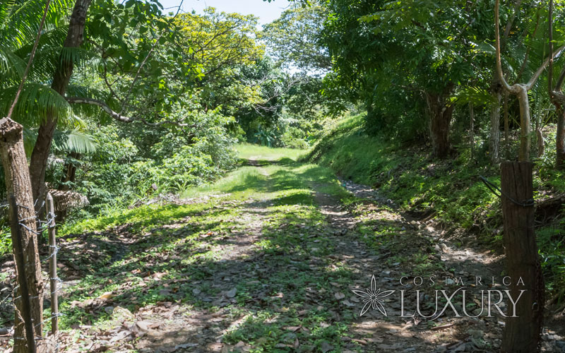 Development Property - 27 hectare oceanfront farm in Carrillo Beach, Guanacaste